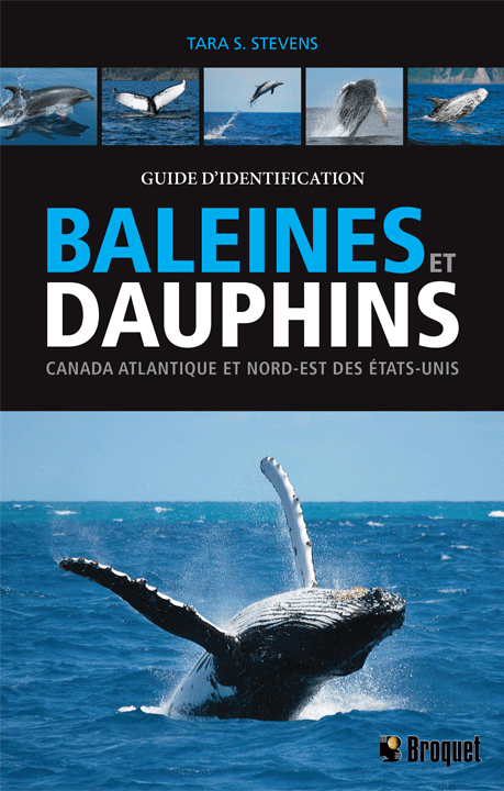 guide-d-identification-baleines-et-dauphins